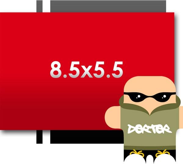 Flyers: 8.5 x 5.5